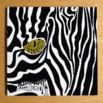Cover di AfroDiscoteca / album inedito di Alessandro Alessandroni per Four Flies Record
