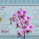 El chiri Mundo - cucina internazionale: invito per serata di Cucina Nikkei